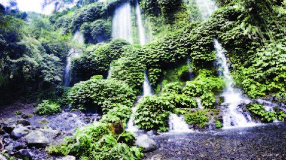 Benong Stokel, Lombok